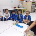 Ciência Viva - Maternal II (07)